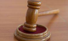 Суд вынес приговор жителю Крыма за убийство котенка